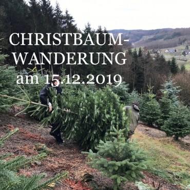 CHRISTBAUMWANDERUNG
